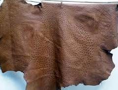 Ostrich leather for sale, great quality Ostrich leather