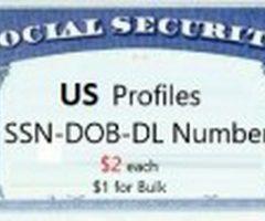 10 Quality US Fulls [SSN-DOB-DL & More]